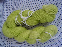 Ravelry Swap BFL Hand Dyed Sock Yarn ~Received~