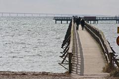 Bjärred, Långa Bryggan (Håkan Dahlström) Tags: bridge sea beach strand skåne sweden schweden playa sverige plage spiaggia bryggan oresund brygga öresund bjärred öresundsbron svezia långa oeresund 浜辺 해변 bjrred lnga