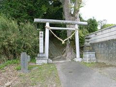 R0014941 (telzo2000japan) Tags: japan geotagged ota ibarakiken  geo:lat=365391431 geo:lon=1405167753