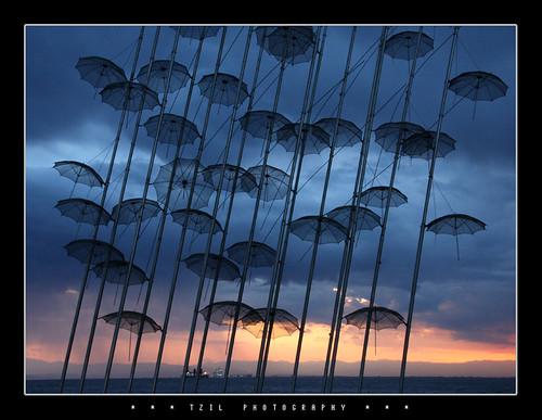 Umbrellas No.1