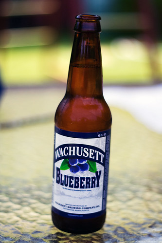 151/365 Blueberry Beer