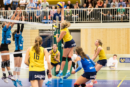 "3. Heimspiel vs. Volleyball-Team Hamburg • <a style=""font-size:0.8em;"" href=""http://www.flickr.com/photos/88608964@N07/32436889850/"" target=""_blank"">View on Flickr</a>"