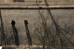 Von oben (Rüdiger Stehn) Tags: 2000er 2000s europa mitteleuropa deutschland germany norddeutschland schleswigholstein 2017 stadt canoneos550d strase menschen leute schatten kielaltstadt kiel