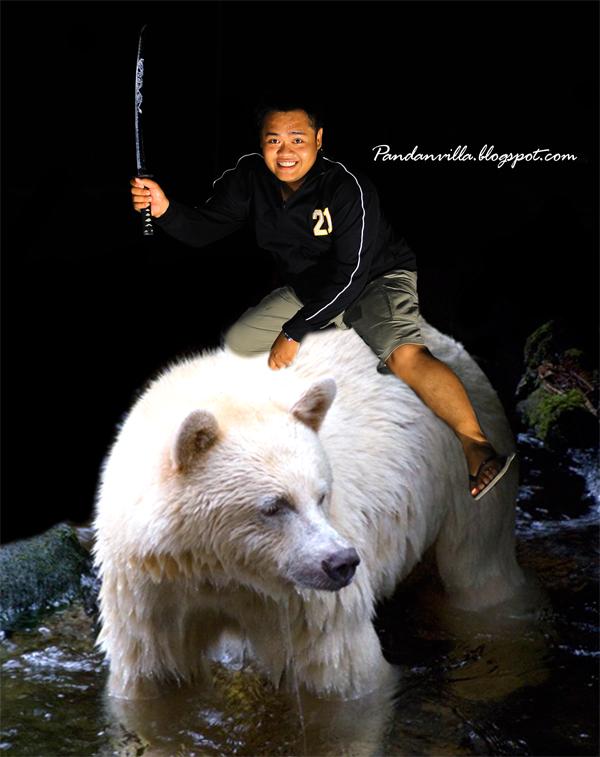 alid dan beruang