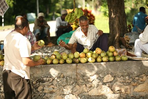 Pemba fruit stall outside Chake Chake airport