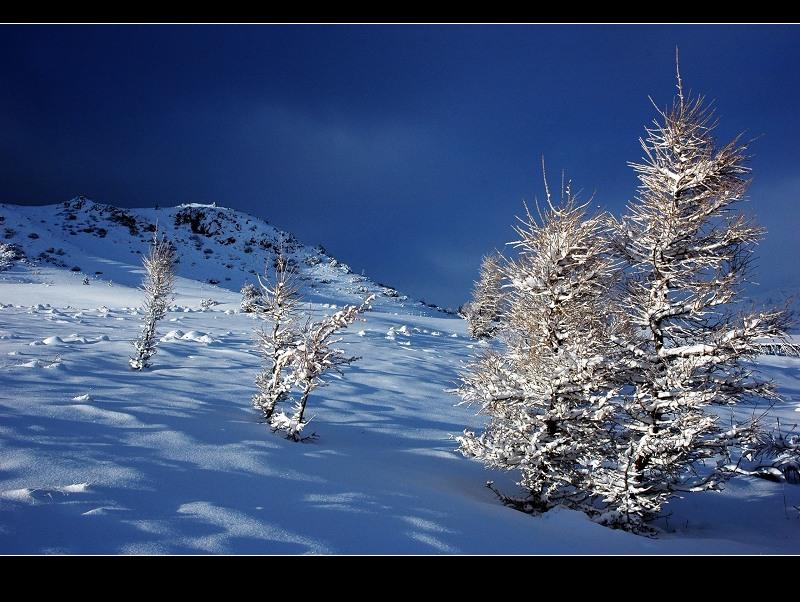 純淨的冰雪世界