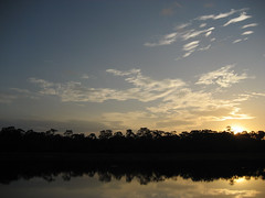 Peru - Sunset in Amazon Rain Forest (danieleb80) Tags: sunset peru forest landscape tramonto selva iquitos paesaggio foresta amazonia rainforset forestapluviale excapture forestaequatoriale peruvianlandscape