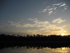 Peru - Sunset in Amazon Rain Forest (danieleb80) Tags: sunset peru forest landscape tramonto selva iquitos paesaggio foresta amazonia rainforset forestapluviale excapture forestaequatoriale peruvianlandscape