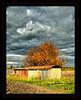 Autumn Drama (bq2210) Tags: autumn sky colours decay fear pressure drama amazingtalent platinumphoto aplusphoto infinestyle diamondclassphotographer flickrdiamond theunforgettablepictures naturewatcher thegoldenmermaid theperfectphotographer onephotoweeklycontest
