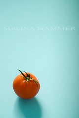 tomato (mwhammer) Tags: blue red stilllife food orange color texture wet tomato alone display object solo round propstyling foodstyling melinahammer tabletopstyling