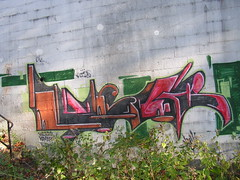 Loser (monolaps) Tags: graffiti jersey