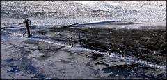 Stretti nel ghiaccio (luca.candini) Tags: lago non pali freddo fvg filo ghiaccio morsa spinato fusine ghiacciato paletti stretti oltreppare esepoioltrepassieilghiacciononreggeiltuopeso