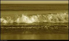 L'uomo e il mare (CarloAlessioCozzolino) Tags: sea poetry mare wave poesia onde charlesbaudelaire impressedbeauty luomoeilmare goldstaraward
