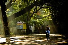 Sleepy Sunshine (knowsnotmuch) Tags: streets sunshine shadows candid skool 392 explored 55200vr