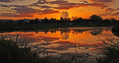 Time To Reflect (mikenpo) Tags: sunset red fab sky orange reflection water silhouette yellow firey potofgold mywinners life~asiseeit qualitypixels