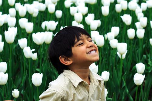 [フリー画像] 人物, 子供, 少年・男の子, 人と花, 花畑, チューリップ, 笑顔・スマイル, 200807071900