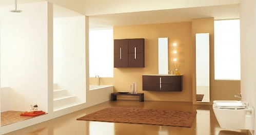 modern-bathroom-remodeling-inspiration