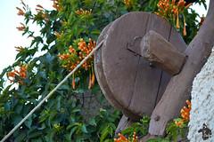 Puits dans la région d'El-Atteuf (Ath Salem) Tags: nikond5200 puits well algérie argelia algeria ghardaïa valléedumzab mzab mozabite ibadite beniisguen bounoura elatteuf melika ksar ksour fortification architecture sahara désert mosquée minaret tajnint atbunur atisguen atmličt patrimoinemondialedelunesco unescoworldheritage mzabvalley fortifiedcity desert histoire history tourism tourisme mosque valledelm'zab ⵜⴰⵖⴻⵔⴷⴰⵢⵜ palmeraie tafilelt واديمزاب الهندسةالمعمارية غرداية الجزائر تراث تاريخ سياحة قصور قصر العطف بونورة بنييزقان آتإيزجن مليكة يونسكو تافيلالت تنمّرين tinamirine مؤسسةتنمرينللثقافةوالتراث