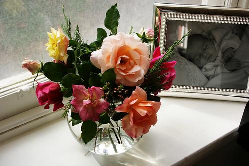 Late Season Roses