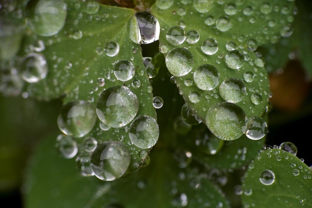 waterdrops-4