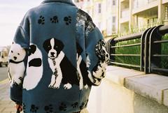 sunday stroll with shhexycorin (lomokev) Tags: dog cute dogs fashion brighton walk contax agfa ultra shameful t2 embarrassing agfaultra contaxt2 kute leisurelystroll deletetag shhexycorin flickr:user=shhexycorin file:name=contax1106b108 flickr:nsid=77774987n00