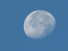 The Moon (duh)
