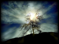 Almost unreal (SwEeTcHy) Tags: blue sunset sky cloud sun mountain tree sol nature sunrise arbol asturias cielo nubes damncool asturies aller goldenglobe excellentphotographerawards platinumheartaward