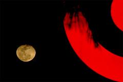 Moonrise, Royal Palm Beach, Florida, 2008