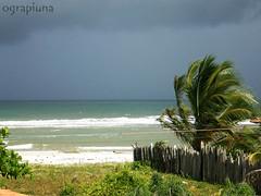 Praia (O Grapiúna) Tags: praia bahia una ilhéus olivença ilhadodesejo acuipe