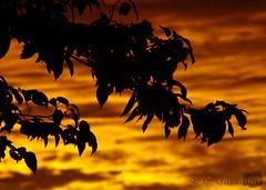 Pinturas de Deus - Sábado 15 de março (Jorge L. Gazzano) Tags: sol explore tarde sonyh9 jorgelgazzano maravilhadedeus