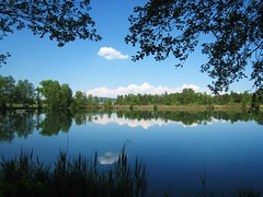Hasli Lake Switzerland (swisscan) Tags: blue sky cloud lake reflection tree water soe themoulinrouge naturesfinest blueribbonwinner firstquality golddragon abigfave ultimateshot visiongroup favemegroup4 favemegroup7 diamondclassphotographer theunforgettablepictures worldwidelandscapes world100f damniwishidtakenthat magicdonkeysbest obq guasdivinas