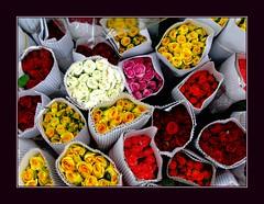 colors (Jayanta Mondal@flickr) Tags: fm qutub
