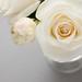 0905 flowers #5