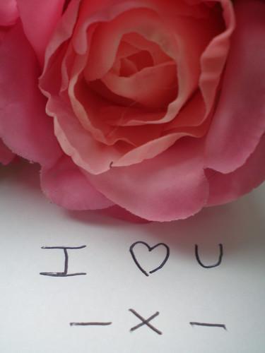 Rosa, símbolo de amor