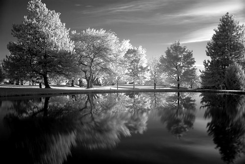 Pond Infrared Beauty