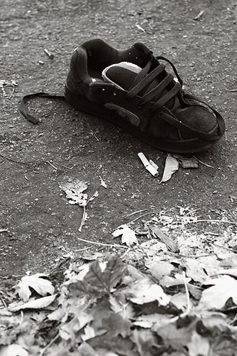 Missing Shoe 4333