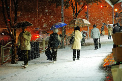 2157/1719 (first snow 2)*:^z (june1777) Tags: street snow zeiss canon eos snap jena 1600 e carl seoul 5d f28 ourtown 80mm czj biometar seoulawardwinner