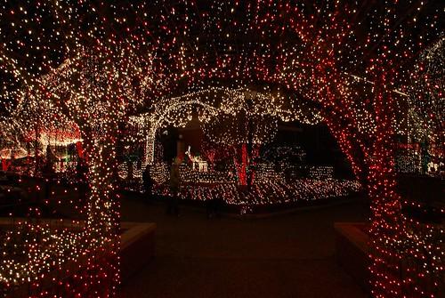 Lights of the Ozarks
