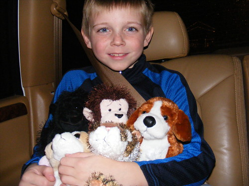Drew and all of his webkinz