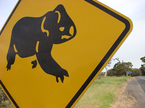The Koala Sign.