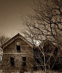 life around the abandoned (McMorr) Tags: old family house abandoned home rural interestingness decay farm country neglected eerie iowa spooky explore forgotten weathered disused homestead discarded forsaken deserted abused fallingapart creativenonfiction mcmorr