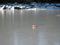 Buoy Out of Reach (photo fiddler) Tags: ice novascotia january buoy buoyant nottobeusedwithoutmypermission