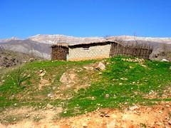 village (kezwan) Tags: nature village kurdistan kurd kezwan