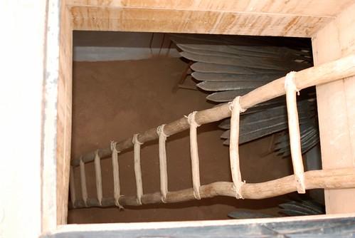 MERZOUGA-SAHARA-2008 254