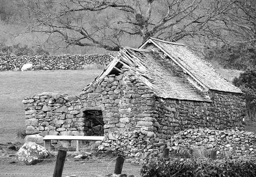 Ruined barn