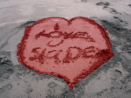 loving slaDE~