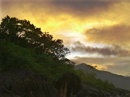 Коко де Мер или Сейшельские дожди, продолжение