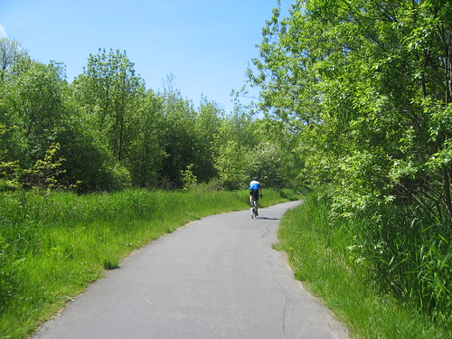 On the Fanno Creek Trail