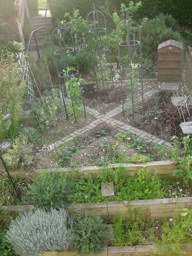 Veg bed 1 May 2011