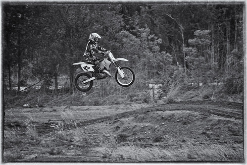 Brittany jump in black and white